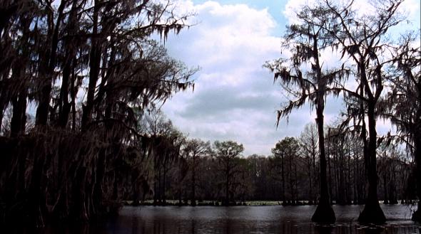 Wind Howling Through Swampland, Uncertain, TX_KyleHughes